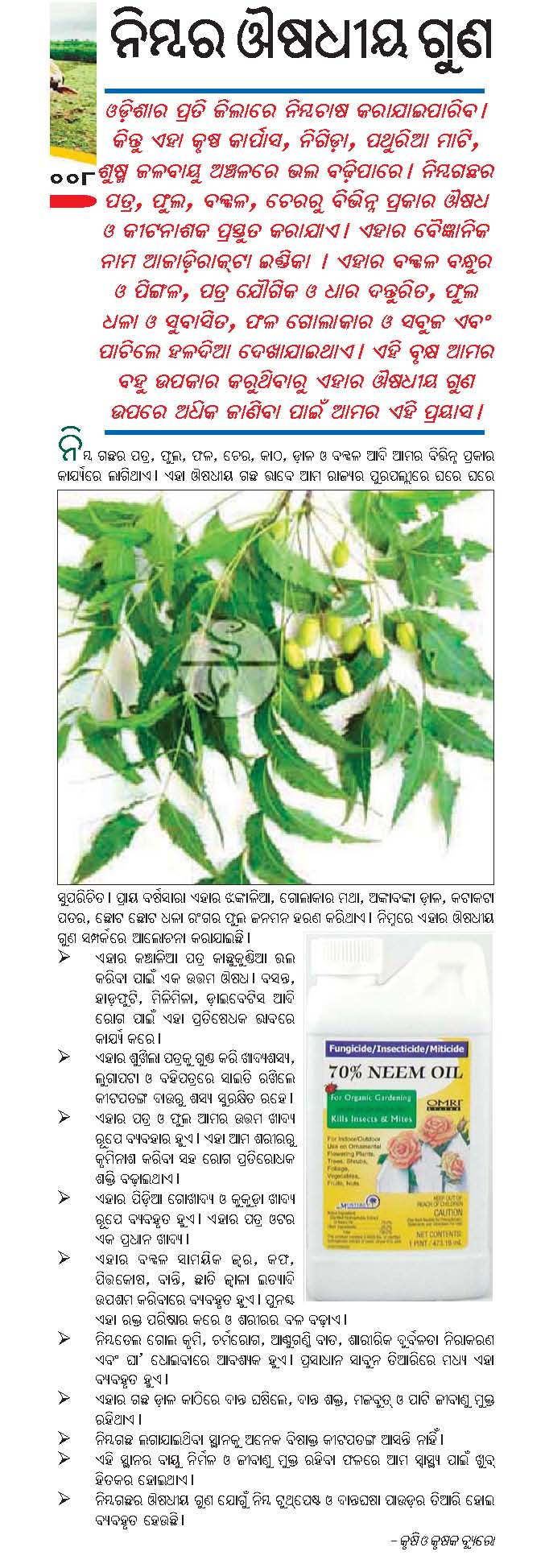 medicinal plants medicinal plants chitta comments off on medicinal effects of neem samaja